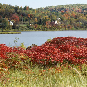 New Brunswick & Prince Edward Island Vacation Packages