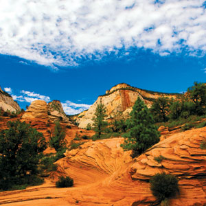 National Parks Vacation Packages
